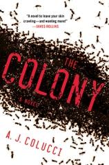 colony-225-1
